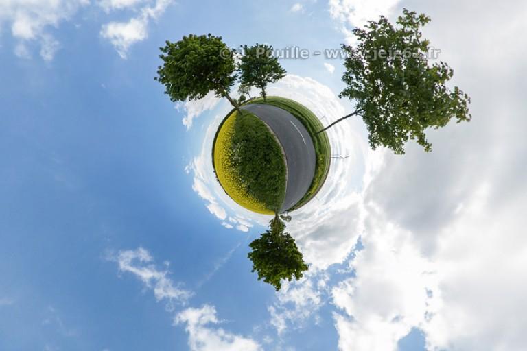 Petite planète arbre