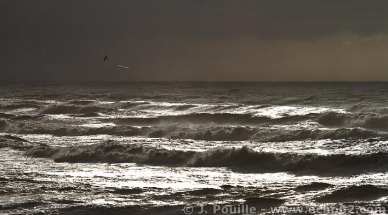 Tempête Joachim sur la côte d'Opale en décembre 2011-27