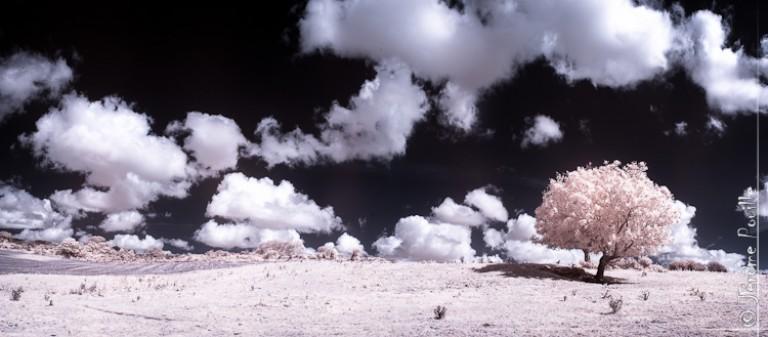 Paysage du Boulonnais infrarouge – septembre 2012
