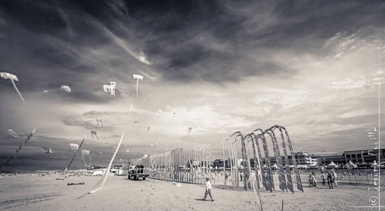 Cerfs volants de Berck infarouges (4)