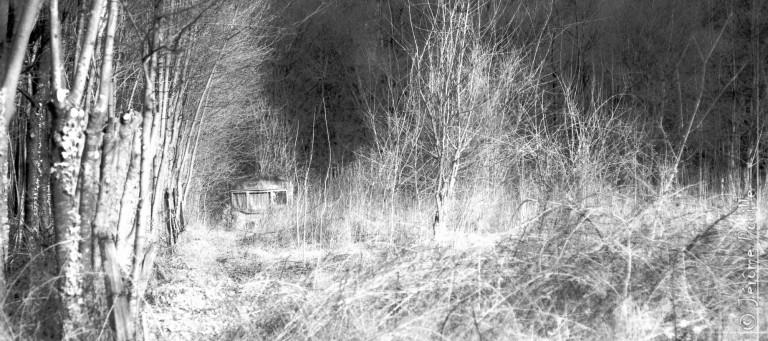 Nielles-les-Bléquin infrarouge (3)