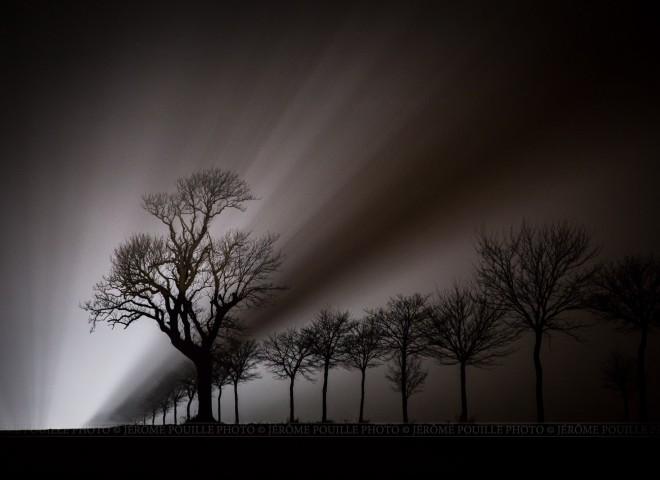 Lumière de la nuit…