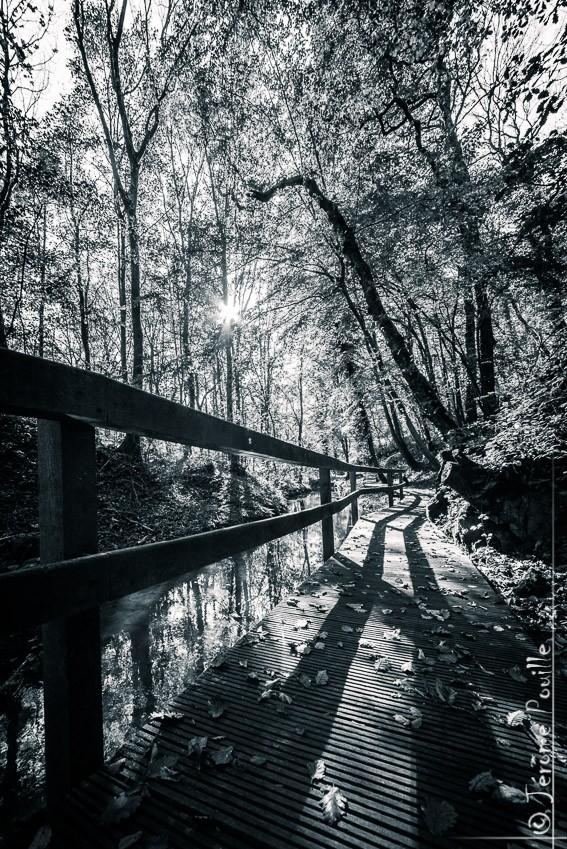 Sentier de la Lawe - Beugin