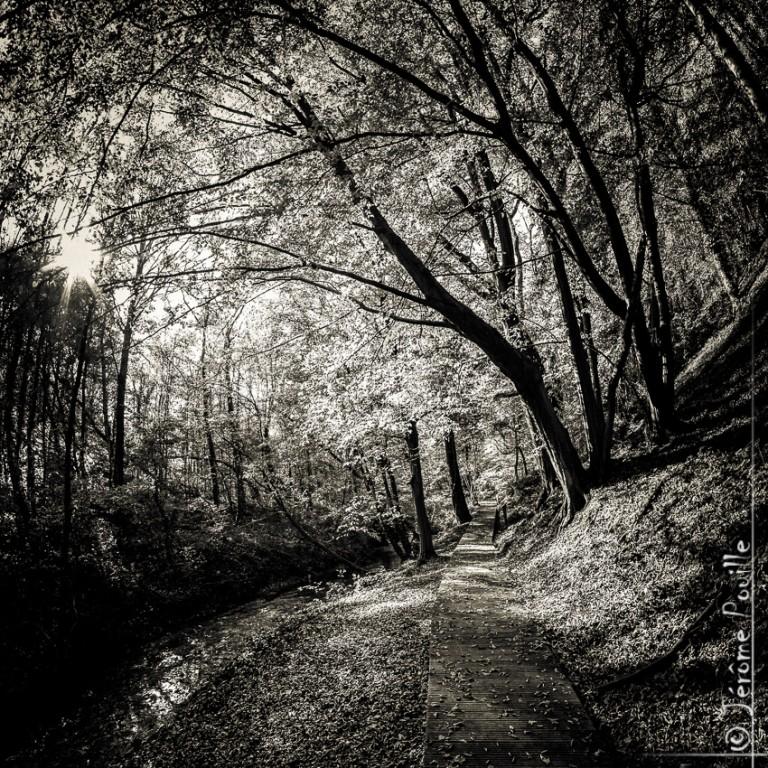 Sentier de la Lawe – Beugin