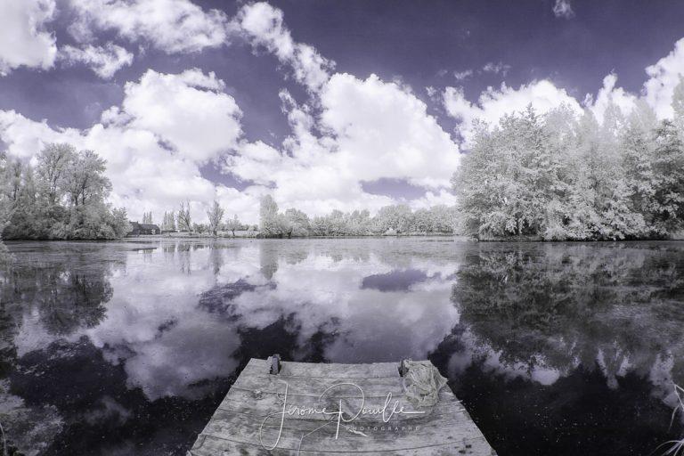 INFRARED  dans le marais d'Aire-sur-la-Lys