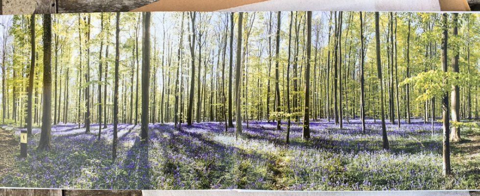Quelques temps après avoir testé le tirage sur plexi chez ce fournisseur, j'ai également profité de leur offre d'essai pour un livre photo. J'ai opté pour un livre de 32 pages au format 28 x 19 cm afin de profiter de leur sympathique «ouverte à plat» pour mes panoramiques. 1ereétape,la […]