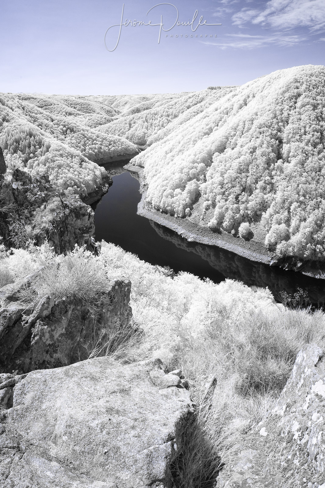 Gratte Bruyère INFRARED