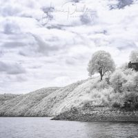 Port Dieu INFRARED