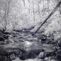 Ruisseau de la vigne INFRARED