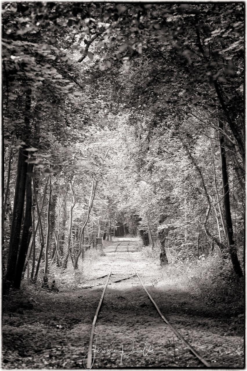 Rando rail du Pays de Lumbres